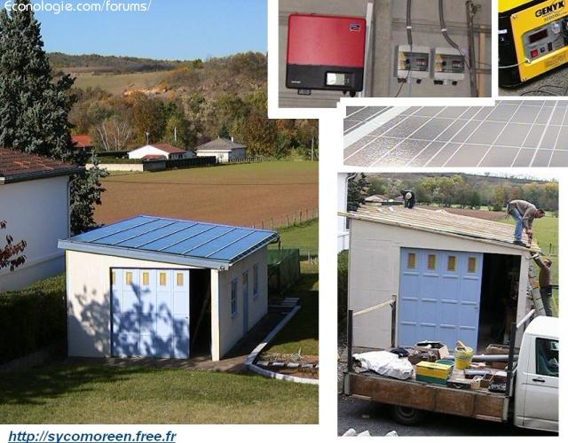 Blog Sycomoréen : le mouvement naturellement énergique ! 1320587499Mh9bGl