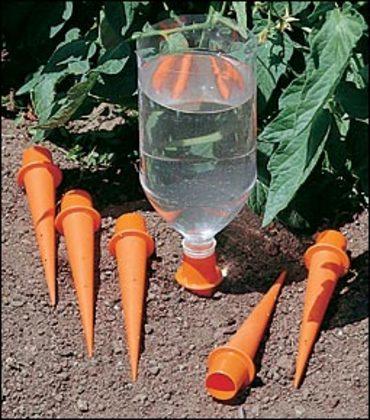 un petit truc pour économiser de l'eau en arrosant le jardin