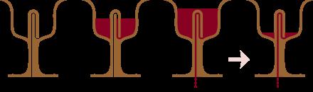 পাইথাগোরের কাপ