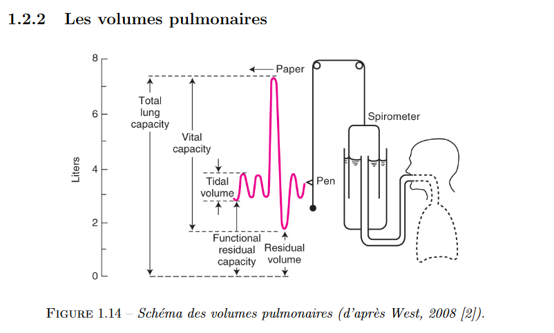Screenshot_2020-04-03 ديناميكيات نقل الأوكسجين ونقله داخل أسينيس الرئة - document.png