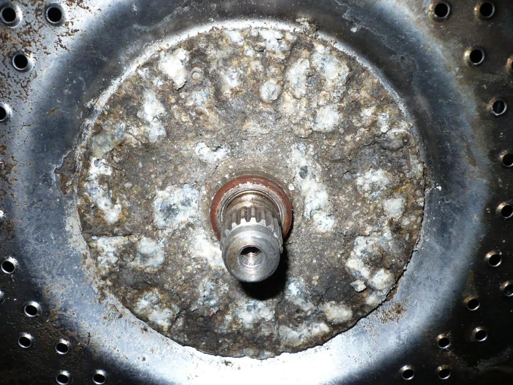 P1020943.JPG