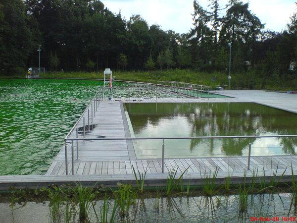 पूल पारिस्थितिक-pic536.jpg