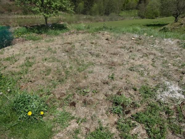 Garden_ardennes_DSC06036.JPG