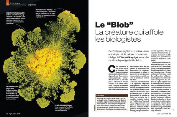 डिस्कवर-ब्लॉब-प्राणी-कौन-आतंक-biologistes_width1024.jpg