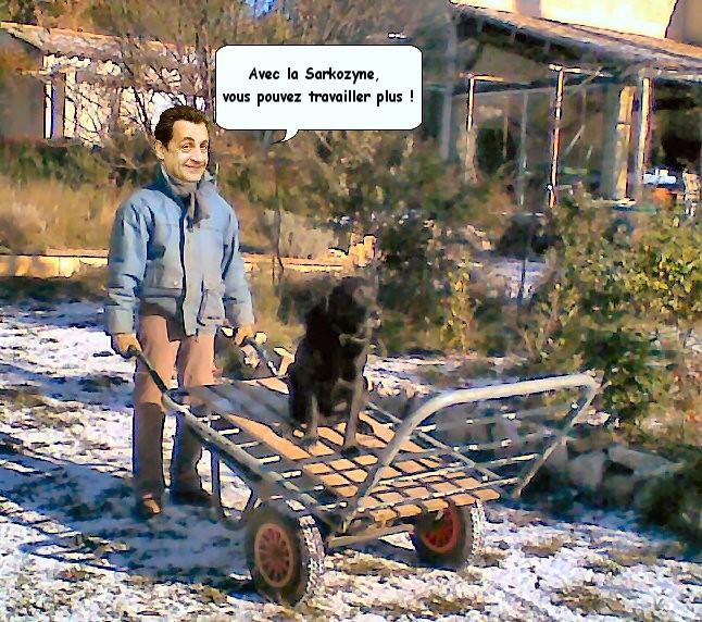 Sarkozyne.jpg