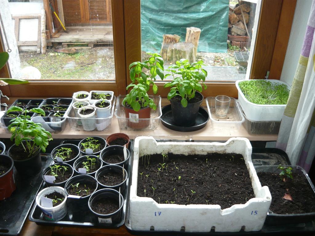 le potager du paresseux jardiner plus que bio sans fatigue page 988. Black Bedroom Furniture Sets. Home Design Ideas