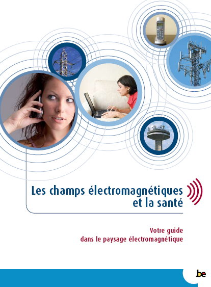 دليل التلوث الكهرومغناطيسي والمعايير