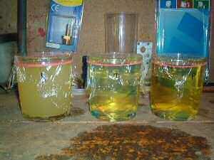 植物油とディーゼルを混合
