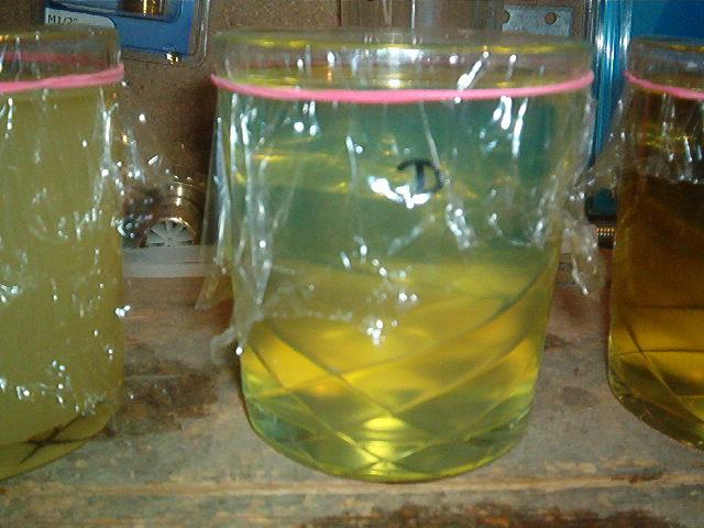huile colza dans gasoil