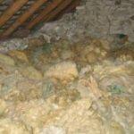 laine de mouton pour l'isolation