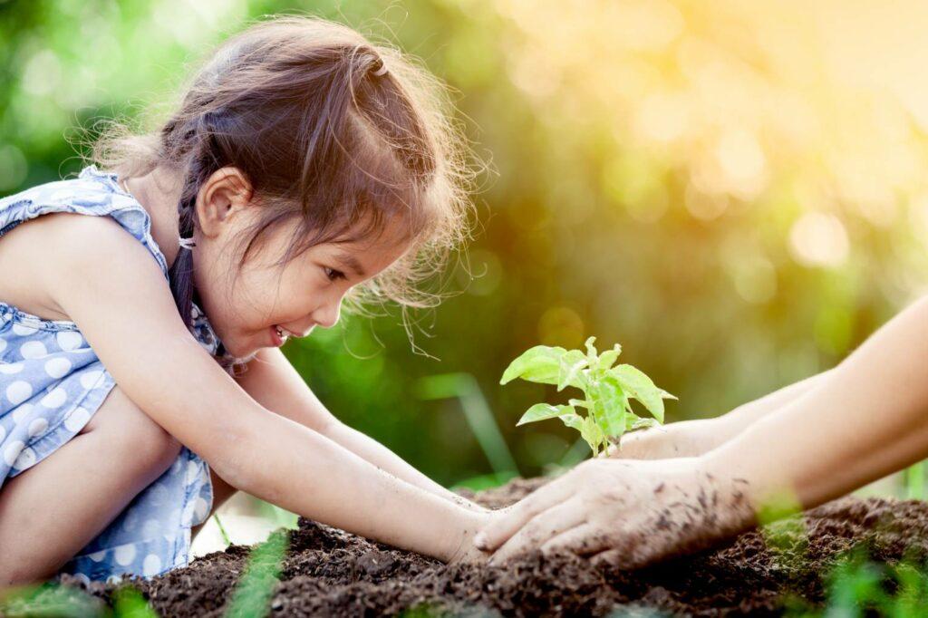 çocuk sebze bahçesi