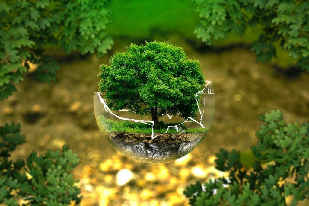 assurance écologique