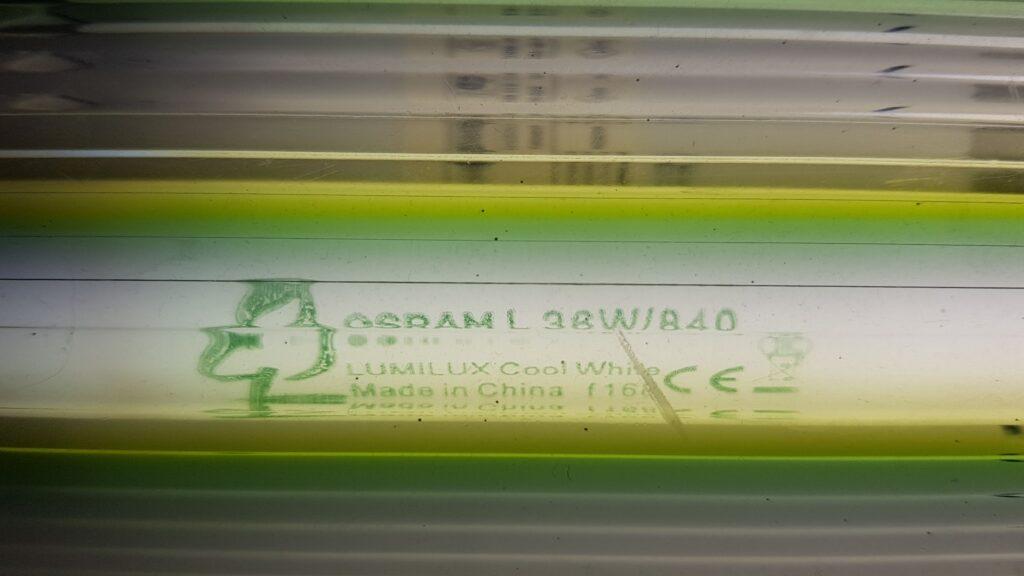 néon 38W osram